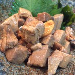 堀切菖蒲園「みっちゃん(居酒屋)」魚がウマい!どれも丁寧に作られていてホッとする酒場