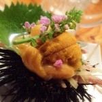 門前仲町「ますらお」酎ハイ200円と魚料理で美味しい一杯!まるで小料理屋のような雰囲気の立ち飲み