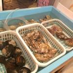 函館「藤田商店」水槽やずらりと並ぶ野菜にワクワク!八百屋の二毛作立ち飲み