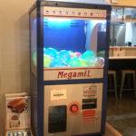 横浜「海鮮とせんべろ 呑りすけ」1000円ガチャで最大7杯!昼飲みもできるアソビルの海鮮居酒屋