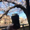 中板橋「石神井川の桜並木でお花見と商店街で飲み歩きを楽しむ(なかいたさくら祭り)」