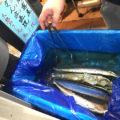 板橋「SHOWA」お酒もつまみもほぼ120円の楽園!1200円で大満足の激安居酒屋